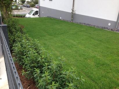 Garten Und Landschaftsbau Frankfurt frankfurt am branchenkompass branchen a z